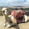 ירושלים של זהב, קלטורה וסיורים מודרכים – המלצות לפעילות בשבתות וחגים