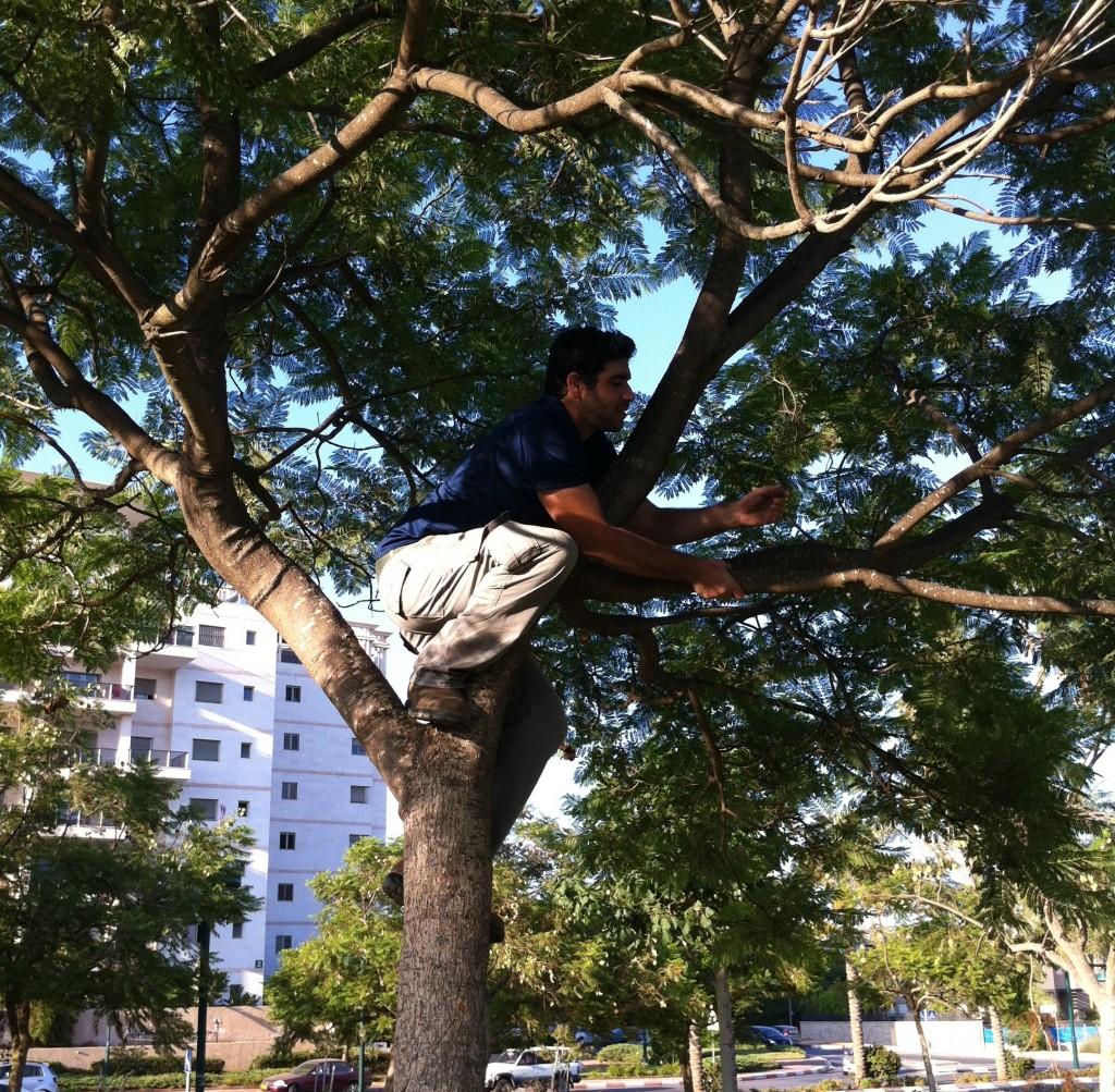 כבר לא צקיך לטפס על קירות (או על עצים)