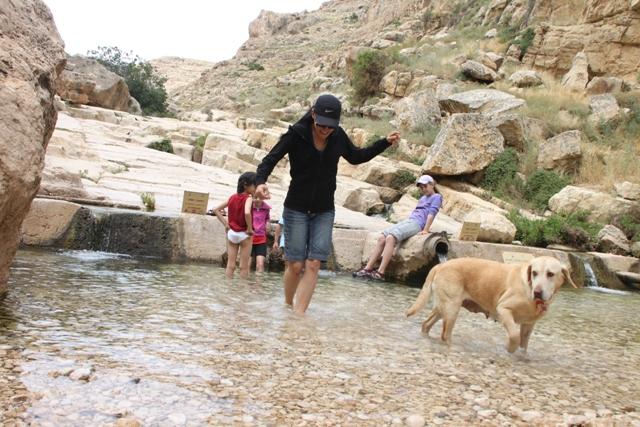 משכשכים רגליים במימי הנחל